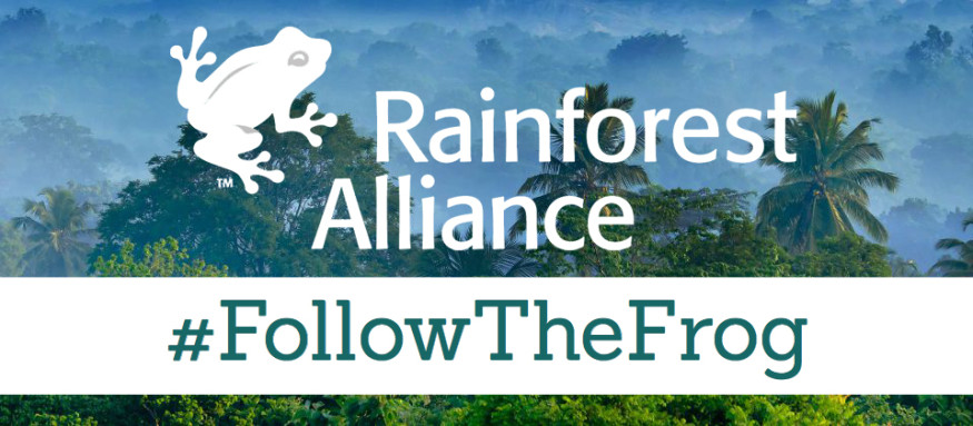 rainforest-alliance-blog